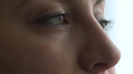avelã : Closeup of the eyes of a female in her early 30s. Stock Footage