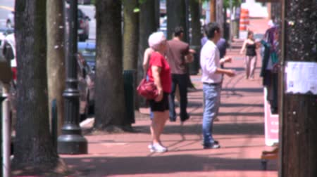 crosswalk : Scenes from Huntington, New York Stock Footage