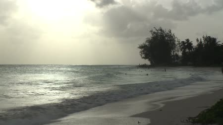 тропический : A peaceful evening on the southern coast of Barbados