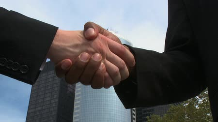 disputa : Business professionals close the deal with a handshake.