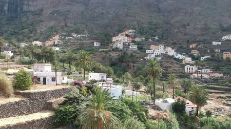 archeology : Drone footage of Valle Gran Rey at La Gomera island