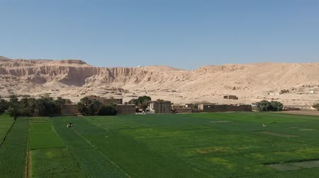 anıt : Scenery view of old Mortuary Temple of Hatshepsut in Upper Egypt (Thebes)