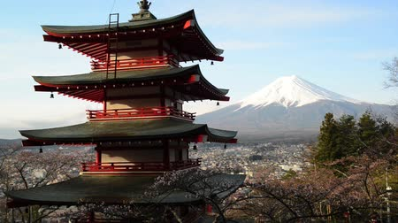 japan :  view of Mount Fuji from Chureito Pagoda of Arakura Sengen shrine during Cherry blossoms season in Fujiyoshida city, Yamanashi Prefecture, Japan Stock Footage