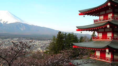 montar :  view of Mount Fuji from Chureito Pagoda of Arakura Sengen shrine during Cherry blossoms season in Fujiyoshida city, Yamanashi Prefecture, Japan Vídeos