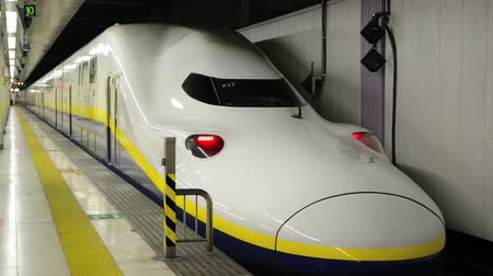 shinkansen : TOKYO, JAPAN - APRIL 13, 2014: A Japanese Bullet Train (Shinkansen) departs from Ueno Station in evening on Apr 13, 2014 in Tokyo, Japan Stock Footage