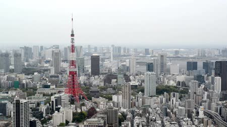 tokio : High angle view over city buildings and streets in Central Tokyo