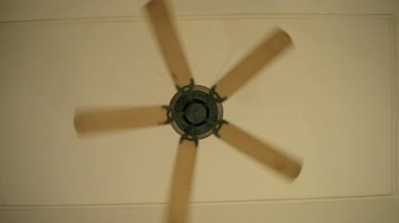 pervane : ceiling fan