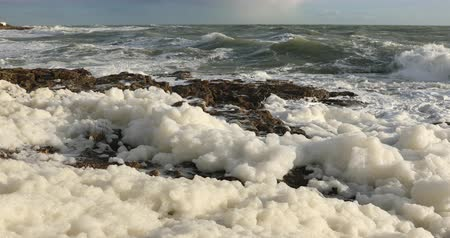 Sea foam in the wind Stock Footage