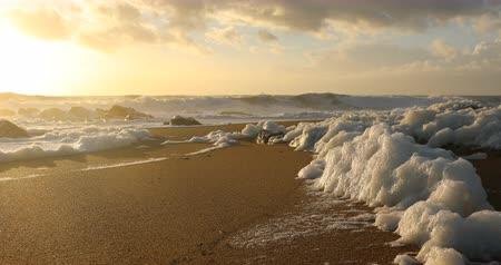Sea foam on the beach at sunset Stock Footage