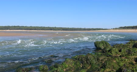 frança : Strong current on the Payre estuary (Talmont-Saint-Hilaire, France)