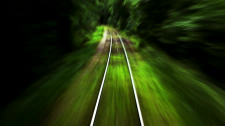 prędkość : Rail through the woods-timelapse Wideo