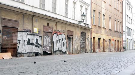 sujo : Dirty old streets with graffiti art