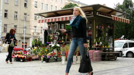 proprietário : outdoor florist with flowers and walking people - building with cars in the background Vídeos
