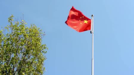 clipping path : China flag - green tree - blue sky - airplane - sunny