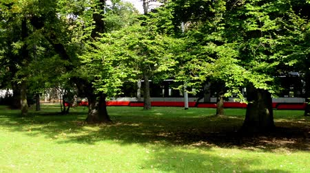 trilho : passing tram in the park (trees) and group of children in the background