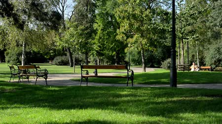 парк : people relax in the park (sitting)- nature (grass and trees) - benches -pavement Стоковые видеозаписи