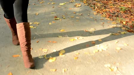 fall through : woman walking in autumn park - shot on feet - pavement with leaves Stock Footage