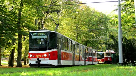 общественный : trams in depot (station) - tram leaves - park (forest - trees) - people walking - sunny Стоковые видеозаписи
