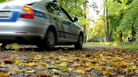 uliczki : Police car - Fallen leaves on road - Autumn park (forest - trees) - people in background