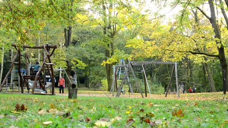mamãe : Playground - people relax -  Autumn park (forest - trees) - Fallen leaves