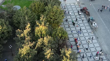 múltiplas : people walking on the street - aerial - park (trees) - urban street - horse carriage Vídeos