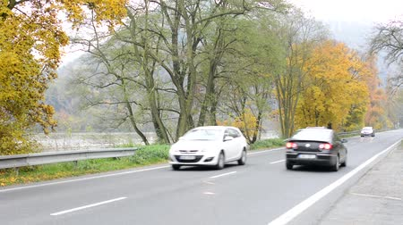 nações : road with cars in countryside (autumn nature) - trees and river Vídeos