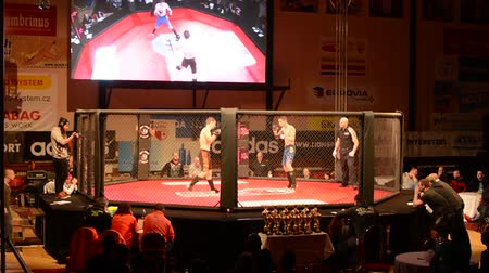 gaiola : PRAGUE, CZECH REPUBLIC - FEBRUARY 28, 2015: MMA fight - combat in the ring