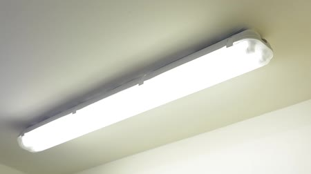 interruptor : switch the light on - one fluorescent lamp - ceiling