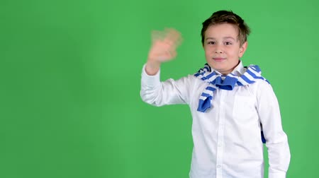 pozdravy : young handsome child boy waves with hand - green screen - studio