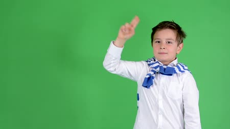 рука : young handsome child boy raise (hold up) - green screen - studio