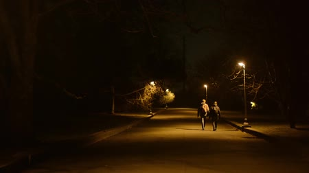 uliczka : night park - people walking - lamps