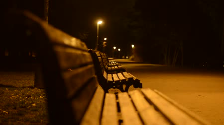 uliczka : night park - benches and lamps - closeup Wideo