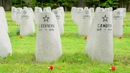 headstone : PRAGUE CZECH REPUBLIC  MAY 2 2015: Cemetery  gravestones  World War II Stock Footage