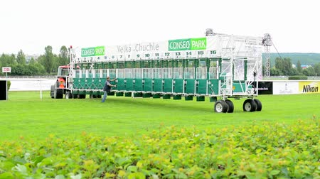 horse racing : PRAGUE, CZECH REPUBLIC - JUNE 21, 2015: horse races - start cage - cage worker prepare for race
