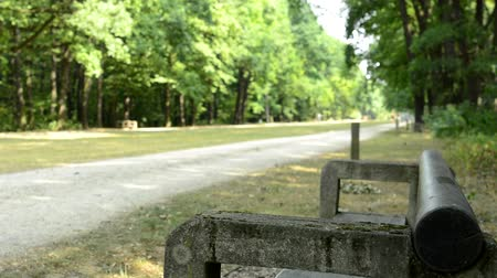 Benches and a cyclist in the park Stock Footage
