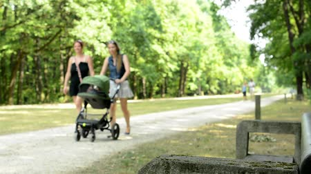 Two women with a pram and man with woman on a walk in the park