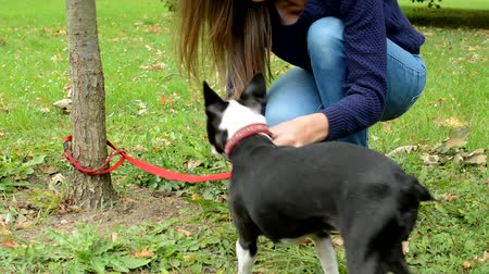 garça : young attractive woman attach french bulldog leash to the tree and leave him in the park
