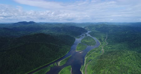 virgin forest : Flight over the forest river Stock Footage