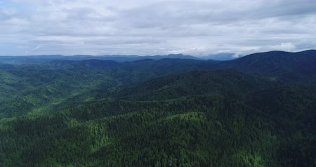 virgin forest : Flight over wooded mountains