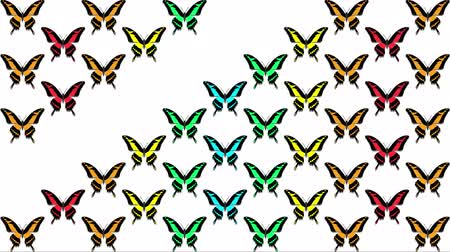 jardim : animation of multicolored butterflies on white background