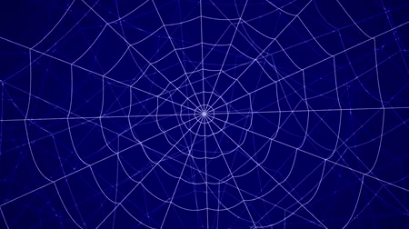 ловушка : concentric cobwebs on a blue background