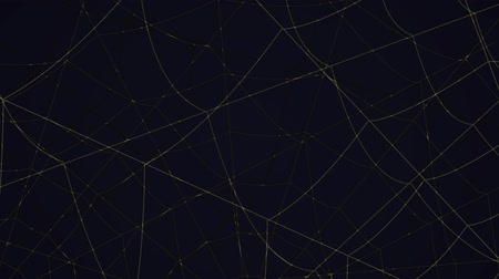 ловушка : concentric cobwebs on a black background Стоковые видеозаписи