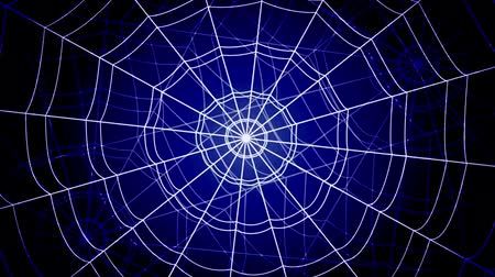 bonyolultság : white concentric cobwebs jump sharply and stick on a blue background