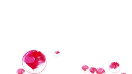 favori : red hearts in the bubbles, fly up, on a white background