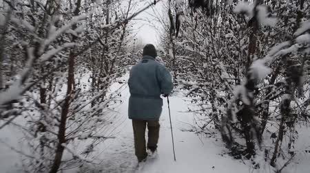 mese : Man walking in beautiful winter landscape