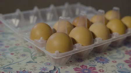 dozen : A dozen chicken eggs