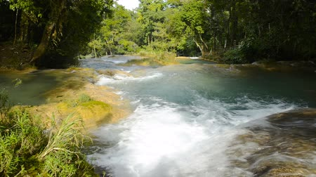 azul : Agua Azul waterfalls flowing through the jungle in Chiapas, Mexico in high definition footage with ambient audio Stock Footage