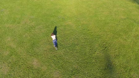 Aerial view. Young girl lying and resting on lawn on sunny day in park on grass. Above view. Woman on grass in meadow. Top view Dostupné videozáznamy