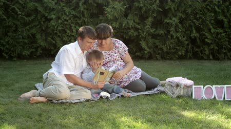 pojistka : family sitting in the summer park on the grass at a picnic