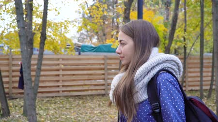 Beautiful young woman wears knitted scarf and walking in autumn park. 4k video motion Stok Video
